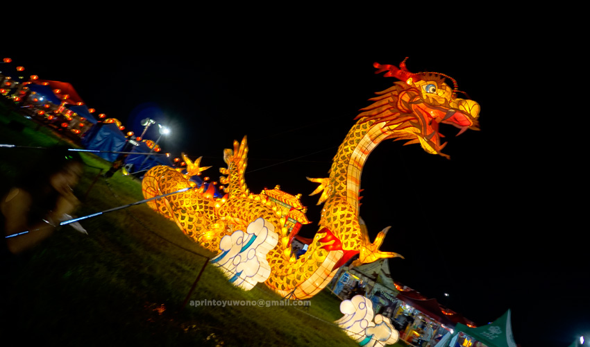 selforia----adaptasi-pesan---festival-lampion-suzhou-the-dragon